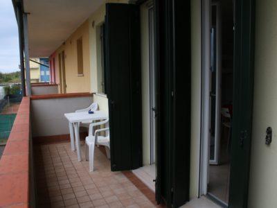 cavvalluccio-marino-plus-13